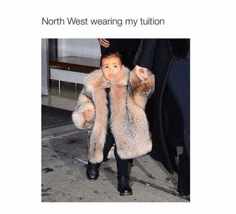 north-west-fur-tuition