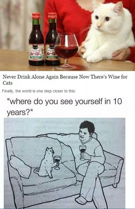 wine-cats-drink-alone