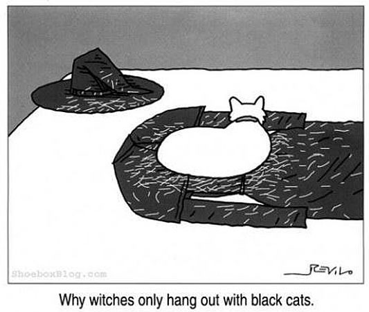 cool-witches-black-white-cats