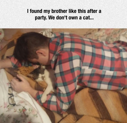 funny-man-sleeping-cat-party