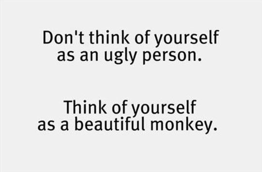 funny-quote-ugly-person