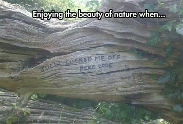 [Image: tree-nature-sign-romance.jpg]