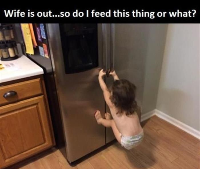 wife-out-fridge-food