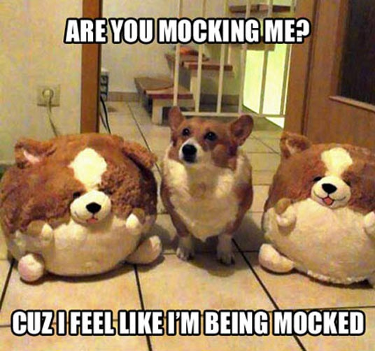 cool-corgi-stuffed-animals