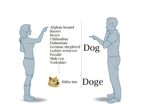 dog-doge-people-internet