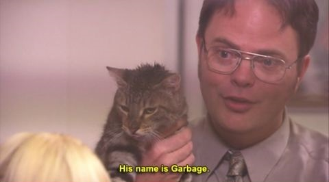 dwight-shrute-office-cat-name-garbage