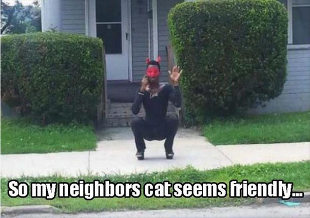 neighbor-cat-man-weird-costume