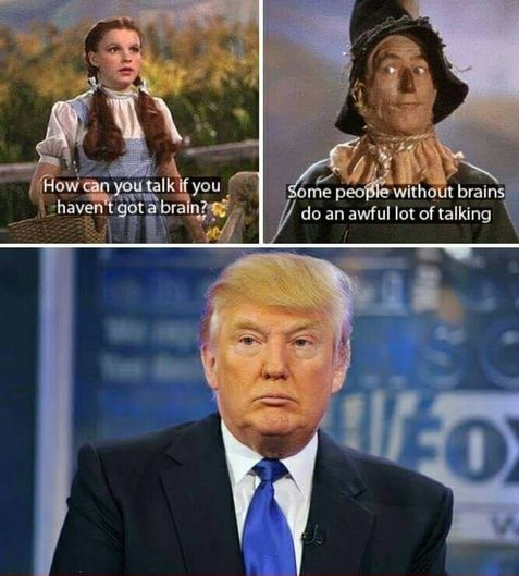 people-without-brain-donald-trump