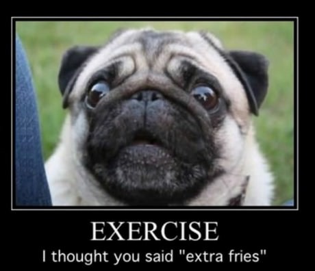 pug-exercise-extra-fries