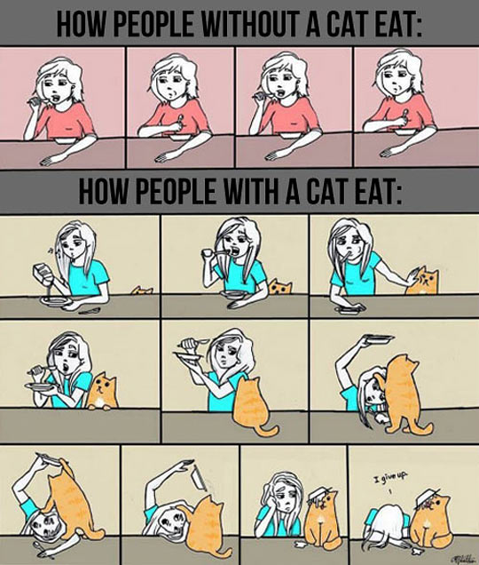 cool-cartoon-people-cats-eat