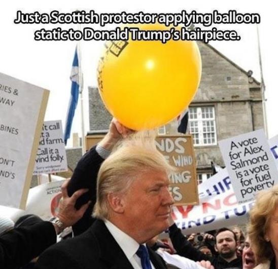 donald-trump-hair-balloon