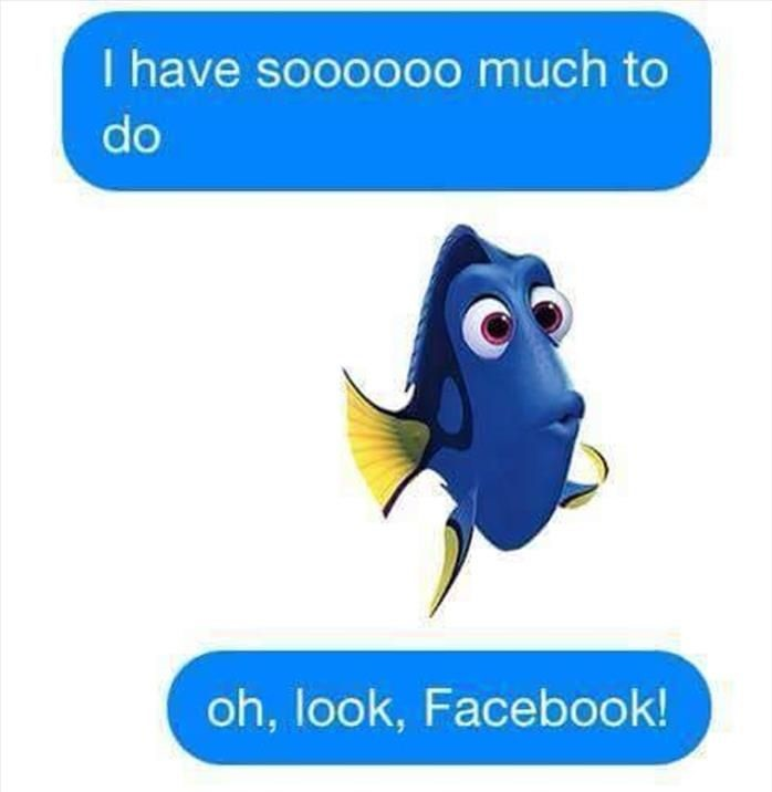 dory-so-much-to-do