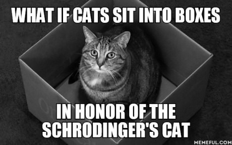 schrodingers-cat-into-boxes