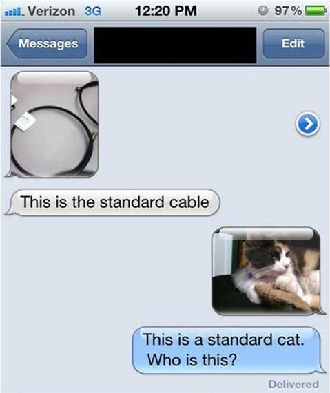 standard-cable-cat-wrong-number