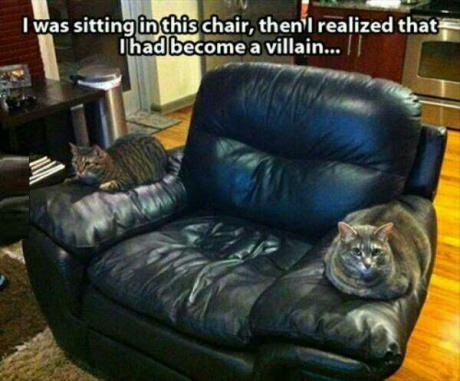 villain-cats-chair