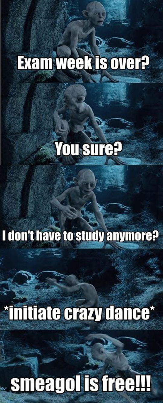 cool-smeagol-exam-week-crazy