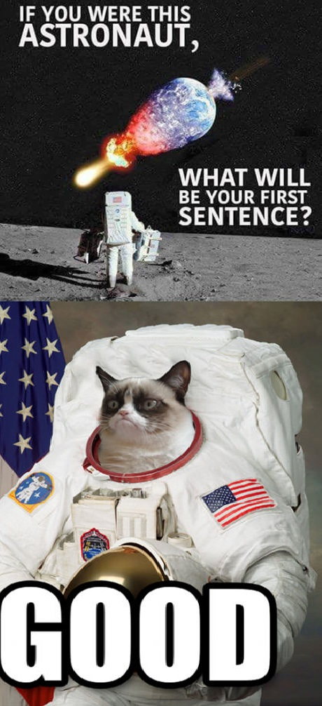 astronaut-earth-grumpy-cat