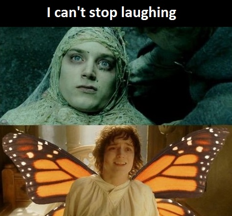 lord-of-the-rings-buttherfly