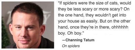 channing-tatum-spiders