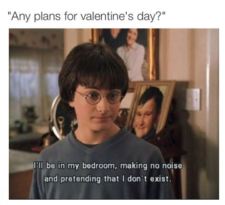 plans-valentines-day-harry-potter