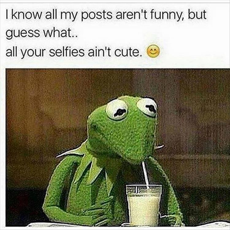 posts-not-funny-slefies-not-cute