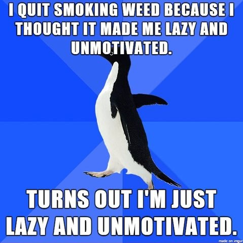 smoking-weed-meme-lazy