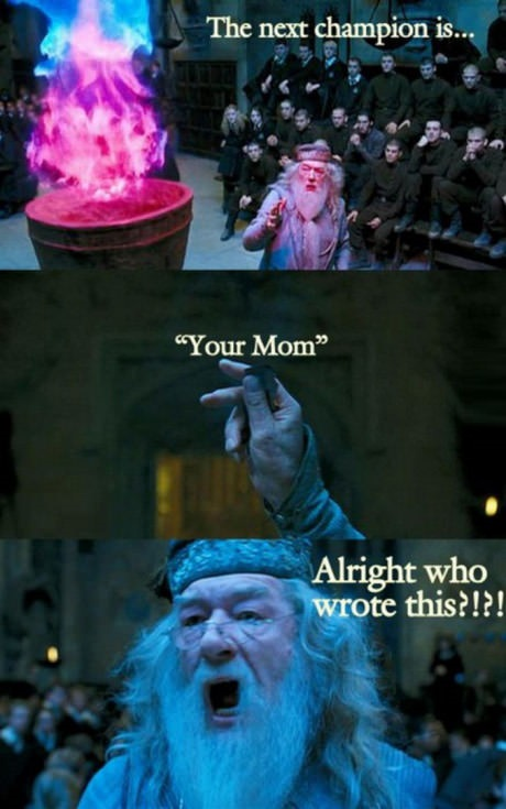 dumbledore-champion-your-mom
