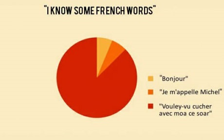 french-words-pie-chart