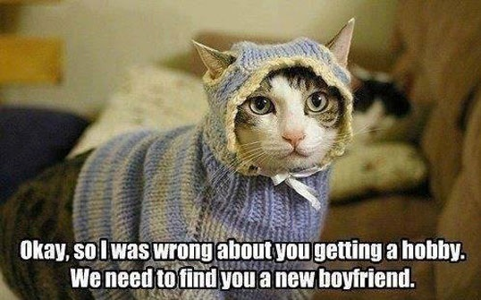 funny-cat-lady-knitting-suit-hobby