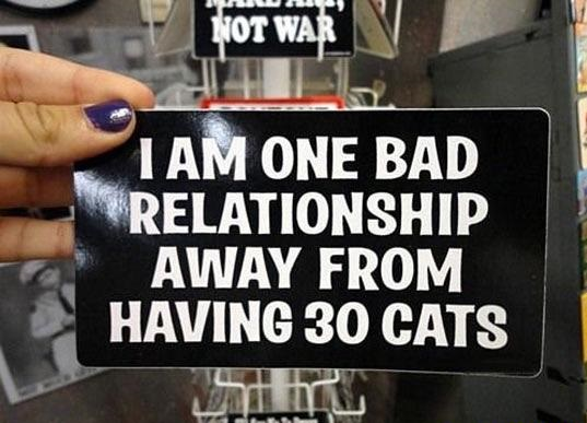 bad-relationship-cats