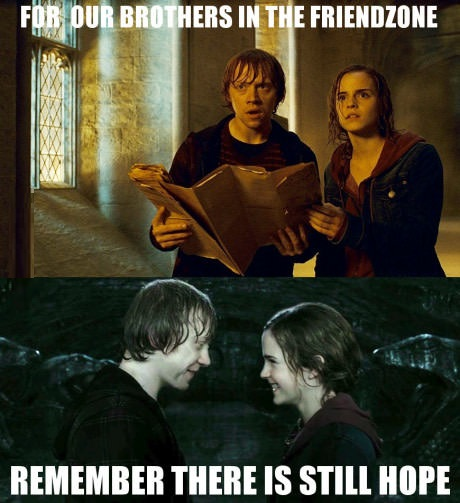 brothers-friendzone-harry-potter
