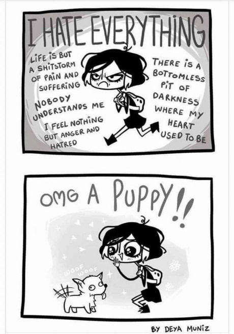 comics-angry-puppy