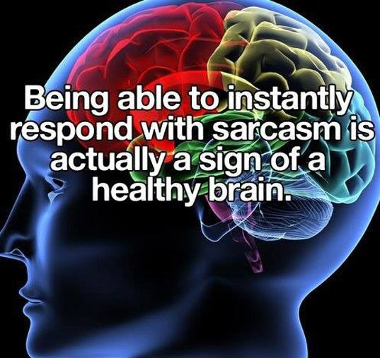 Sarcasm makes everything better