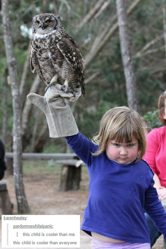 cool-girl-owl-bird