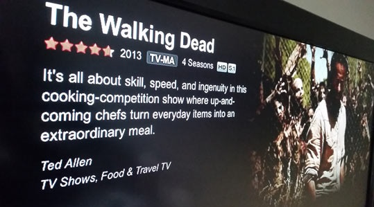 funny-Netflix-The-Walking-Dead-description