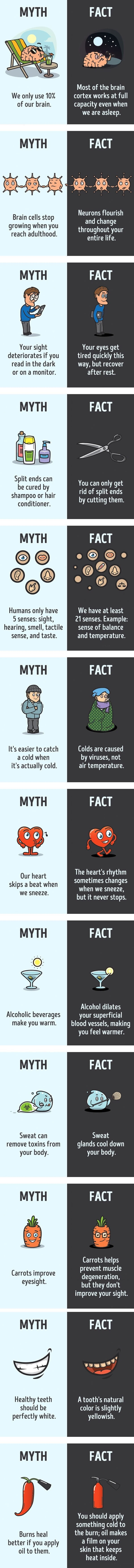 myths-facts-comics