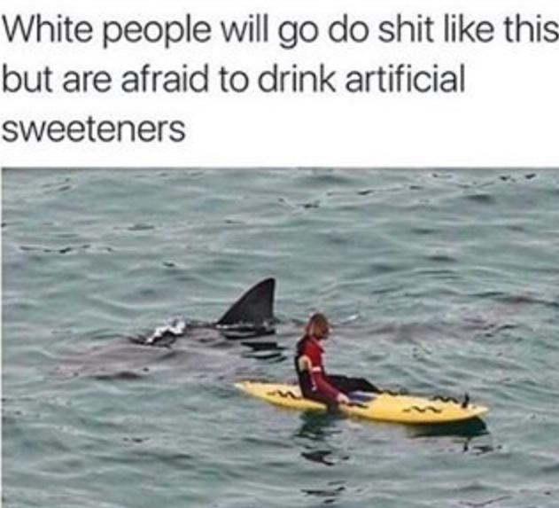 white-people-shark-crazy