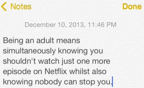 cool-adult-Netflix-quote-notes
