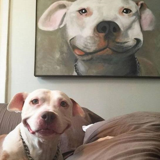 dog-painting-smiling
