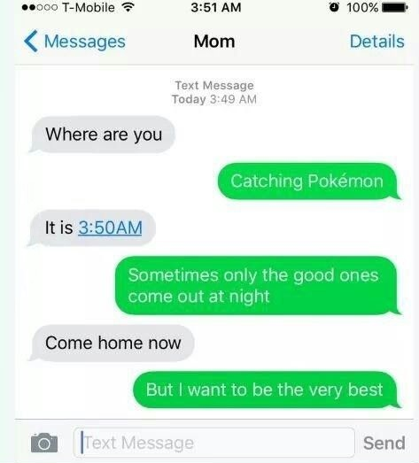 mom-text-pokemon-go-night