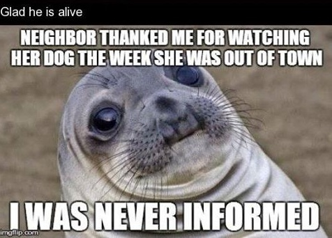 neighbor-watcing-dog-meme