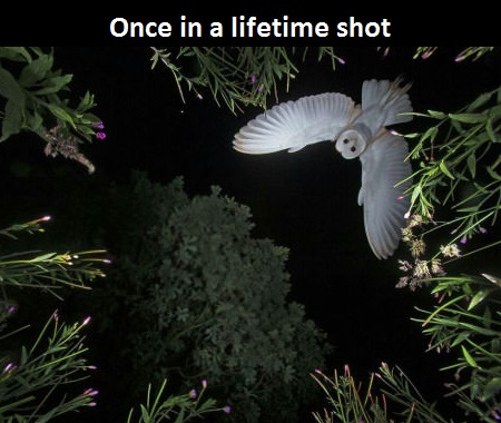 Perfect timing