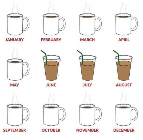 Coffee during the year