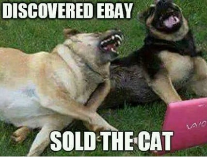 dogs-ebay-cat-sold