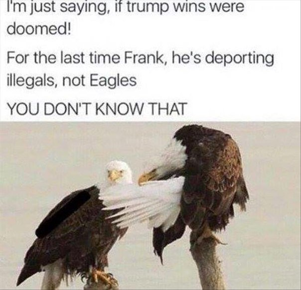 eagles-illegal-trump