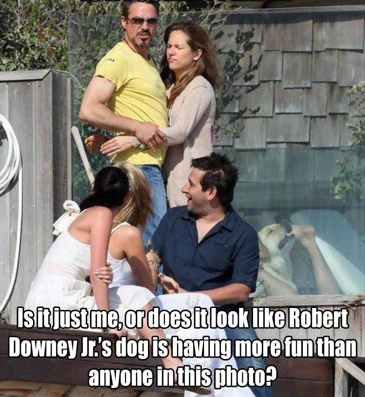 robert-downey-jr-dog