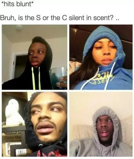 hits-blunt-scent-silent