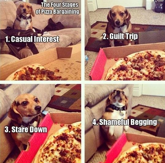 stages-pizza-bargaining