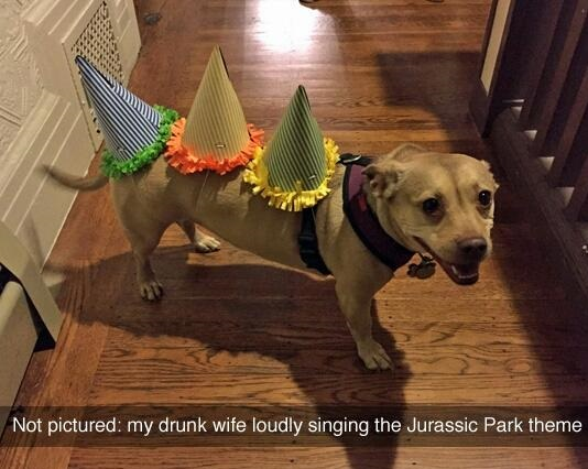 wife-drunk-dog-jurassic-park