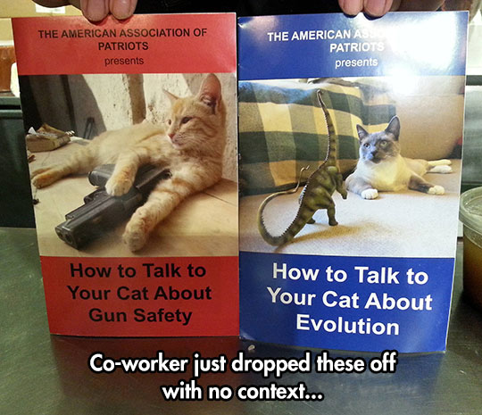 cool-book-teaching-cat-weapon-evolution